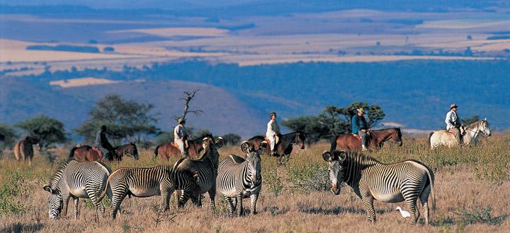 Lewa Wilderness, Kenya