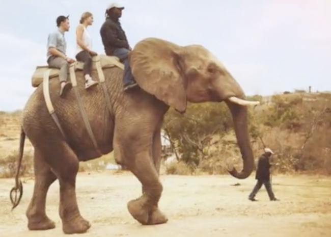 Elephant riding in Africa