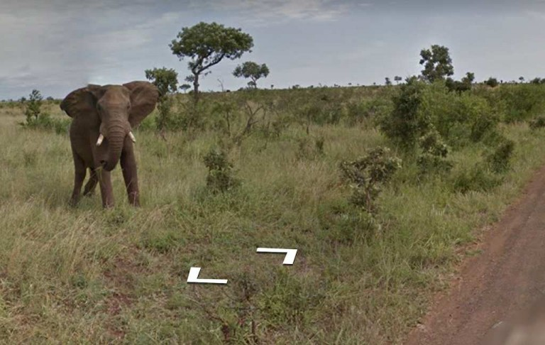 Hop Aboard for a Virtual Tour of South Africa Via Google