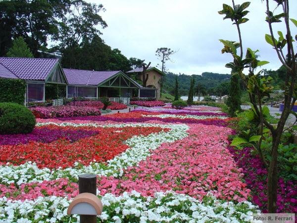 Unique Garden, Brazil