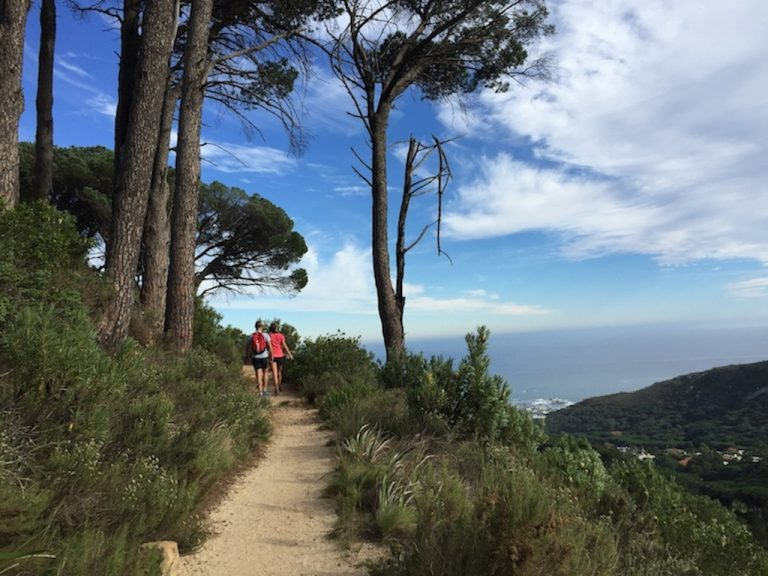 Hiking Along Table Mountain's Spectacular Pipe Track PICTURES