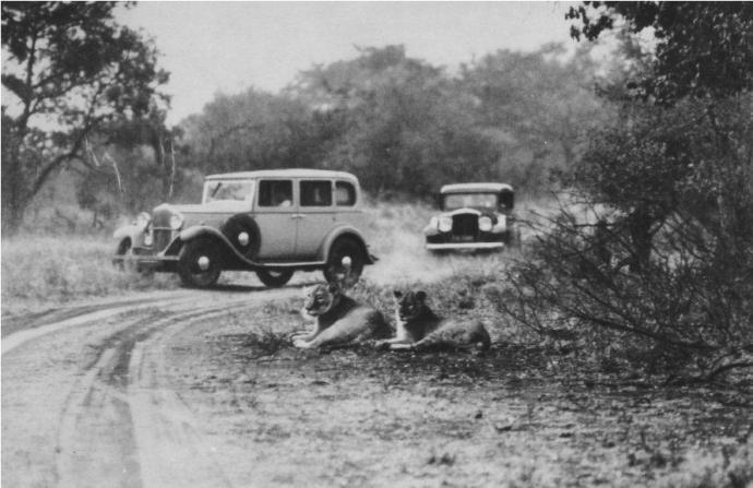 Kruger National Park Game viewing in the 1930s © SANparks archives