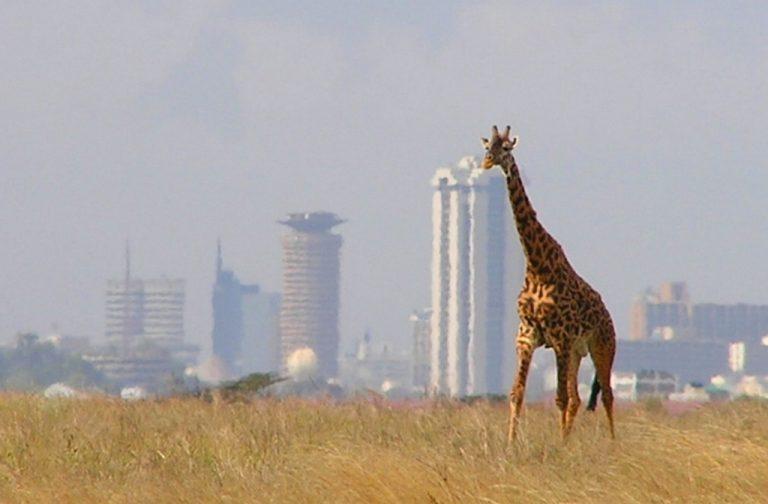 Kenya Is Aiming for Those SA Tourist Rands