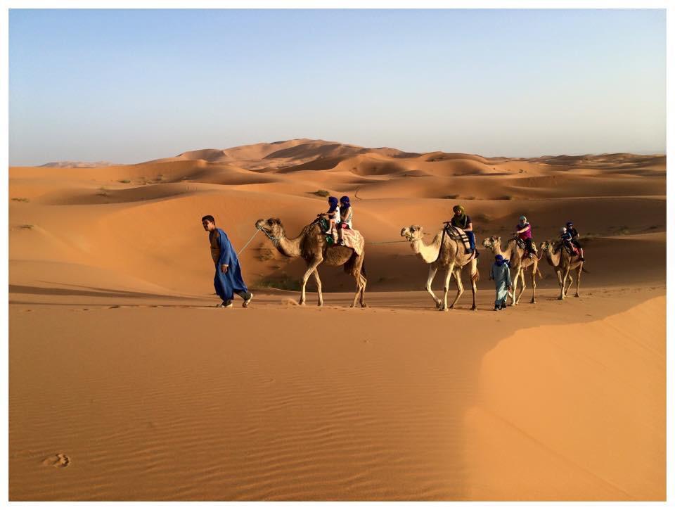 morocco bruce marais travel tourism camels desert merzouga