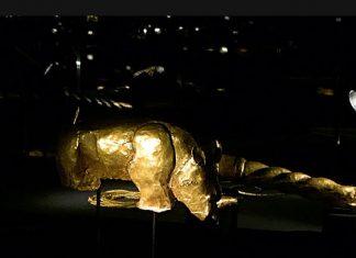 rhino mapungubwe gold javett art centre pretoria