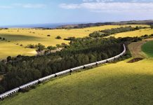 train-trips-south-africa