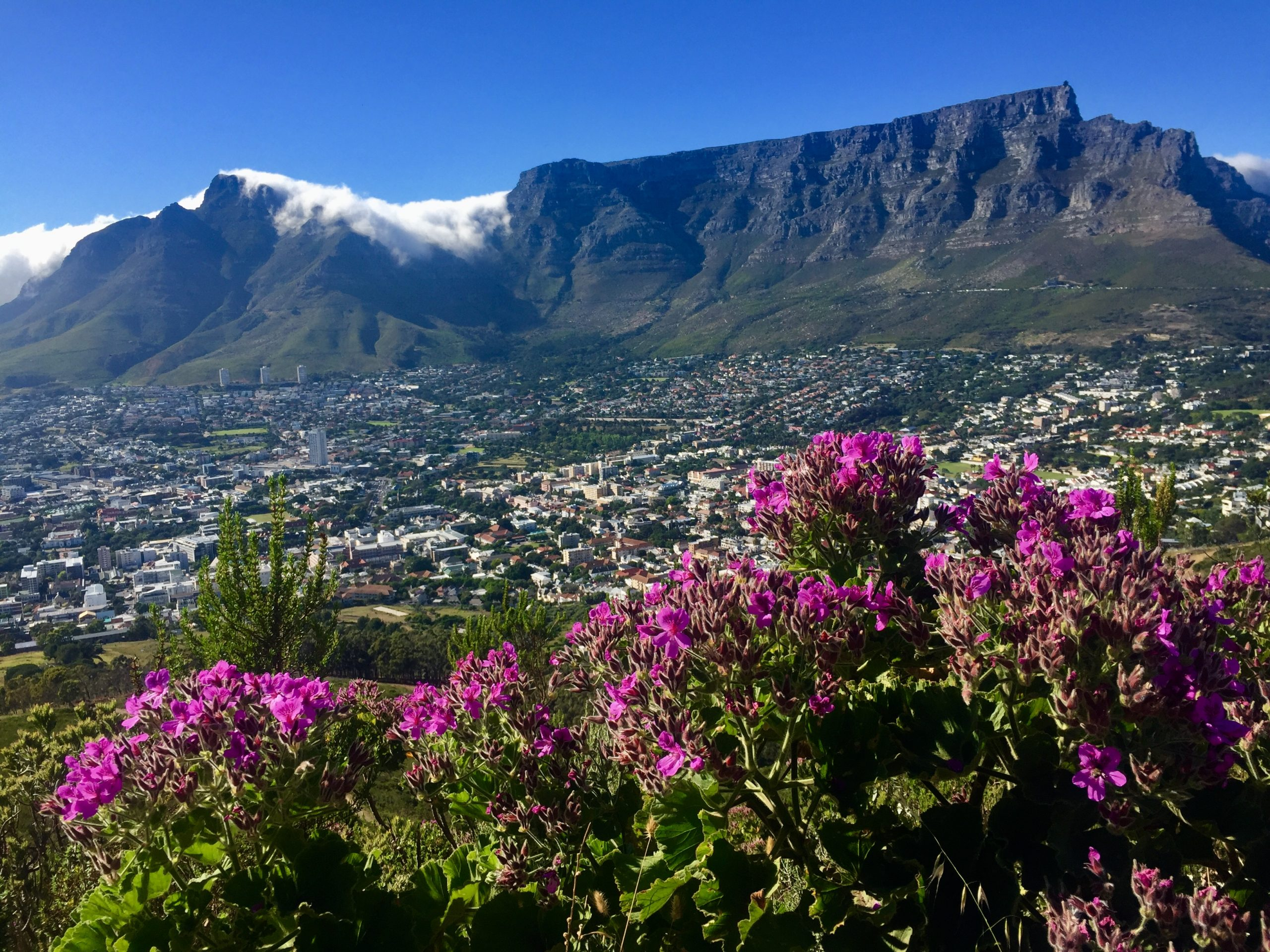 table mountain cape town views travel