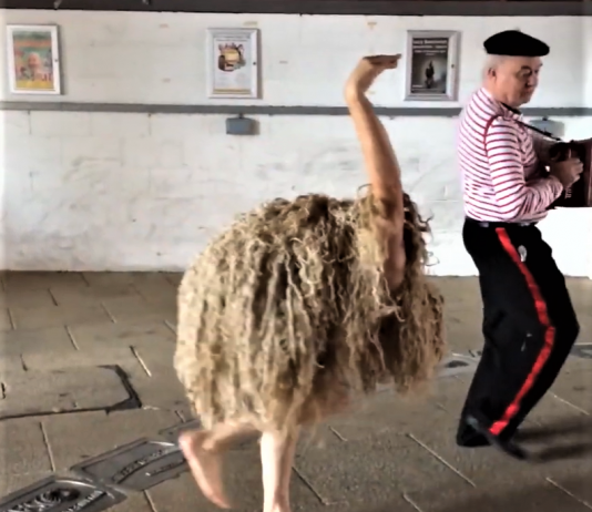 ostrich yorkshire goole video