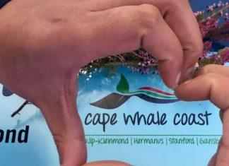 cape whale coast south africa travel