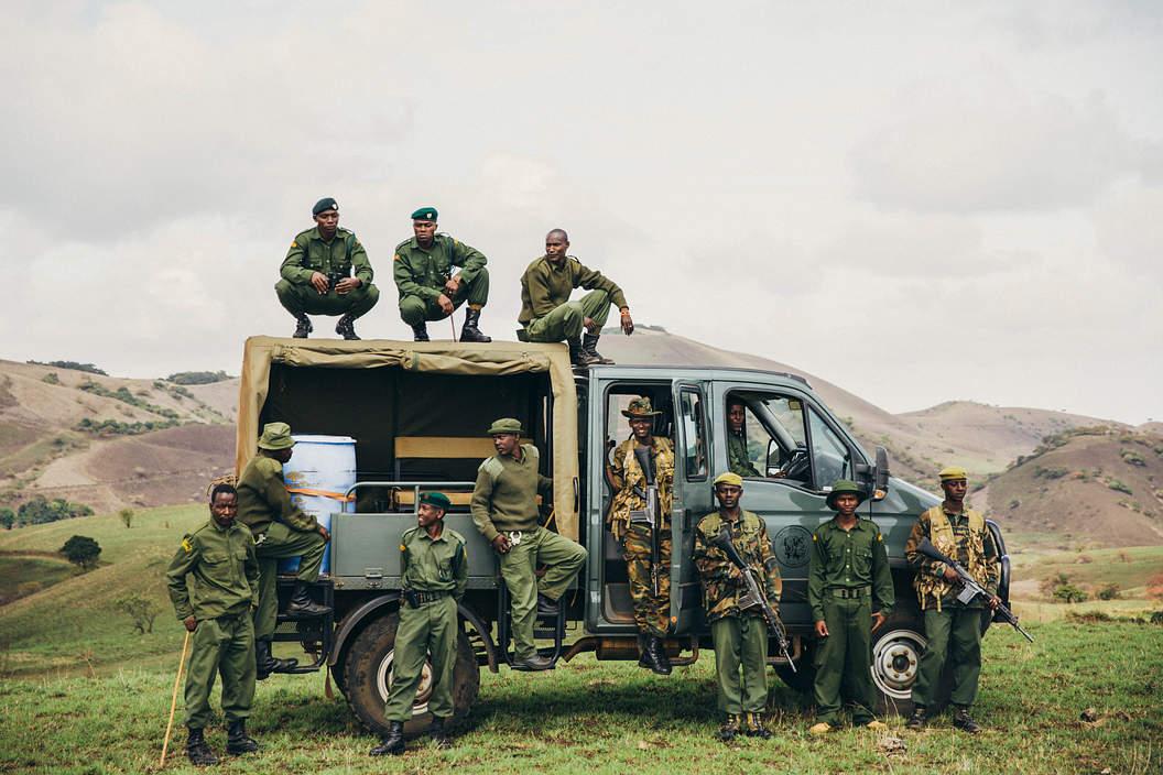 sheldrick wildife trust elephants kenya