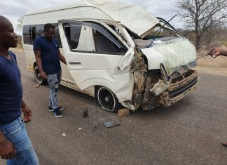 """A Swiss tourist is in critical condition after a giraffe in the Kruger National Park was struck by a minibus - even though it had """"the right of way"""" - and collapsed on a second vehicle."""