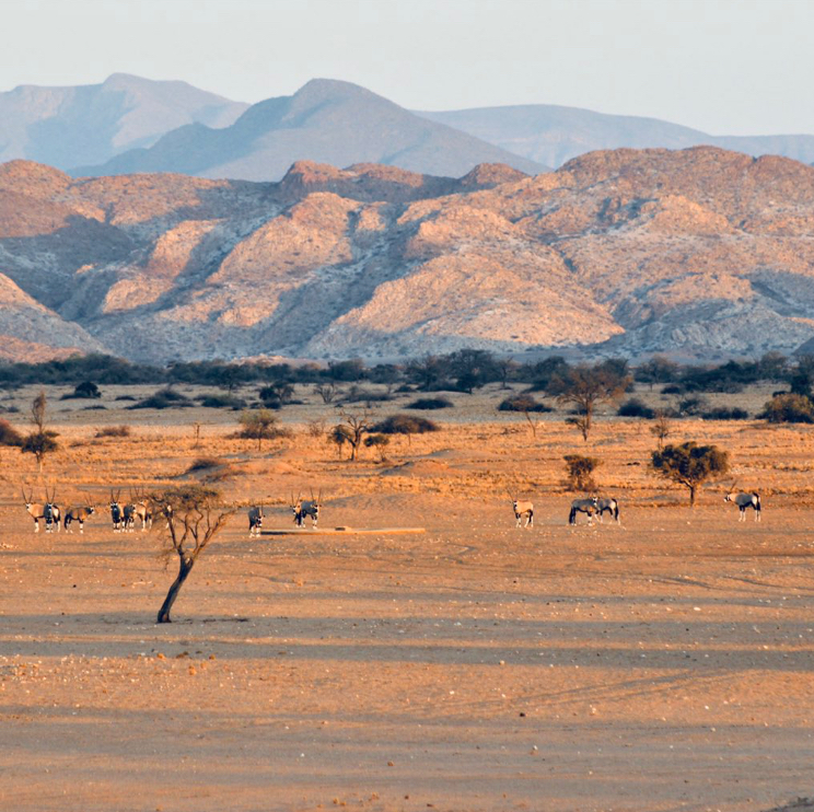Iona National Park angola African Parks