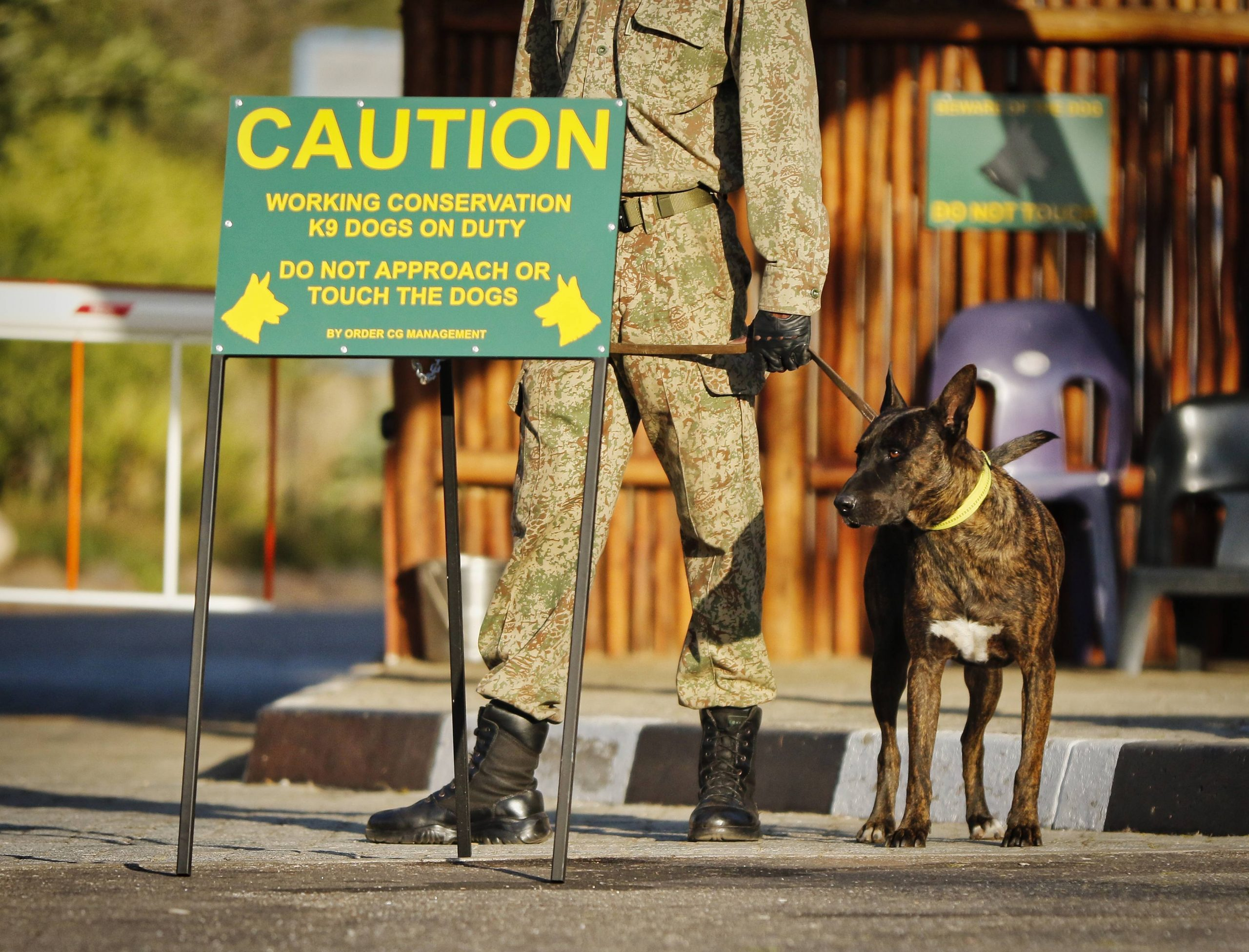 antipoaching k9 dog ranger pit-track rhino conservation south africa