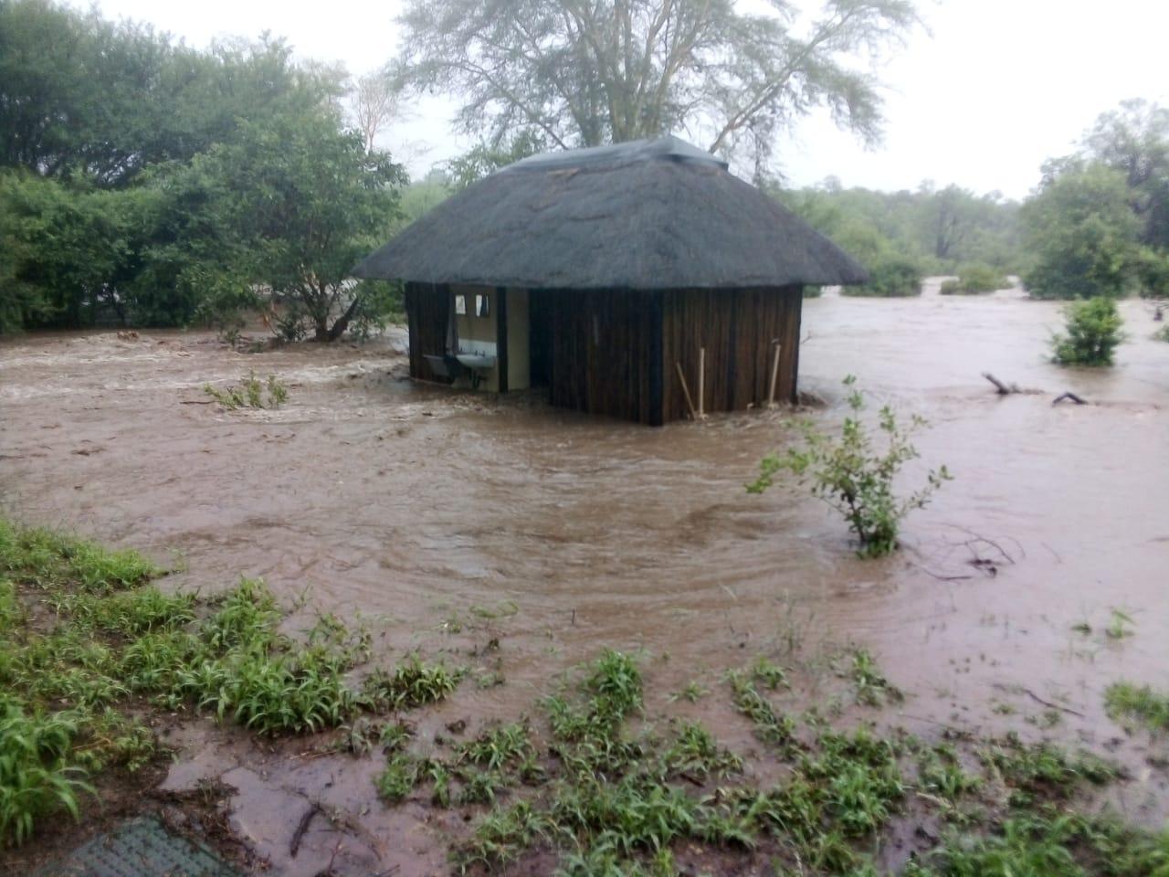 nyalaland kruger national park south africa heavy rains flooding