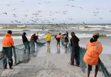 fishermen cape town false bay south africa fish nets