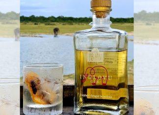indlovu gin south africa