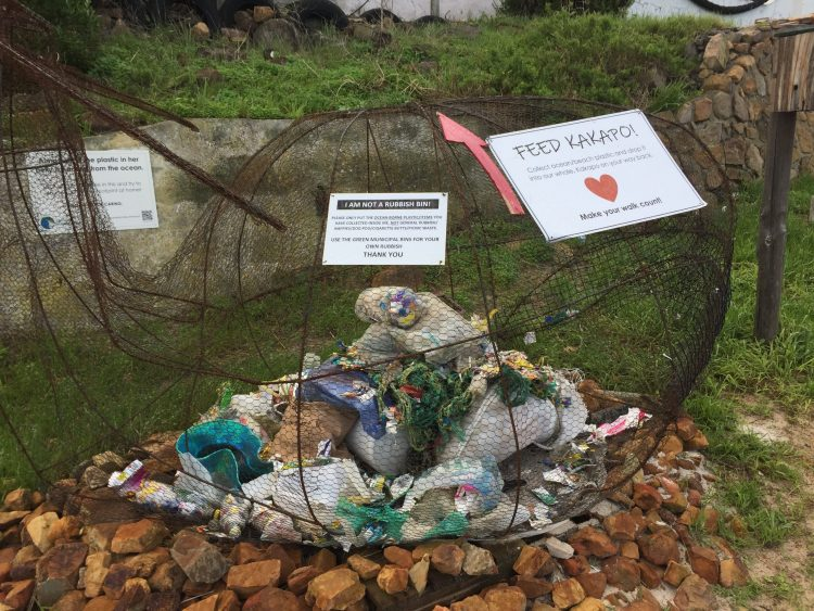 recycling noordhoek beach cape town south africa travel