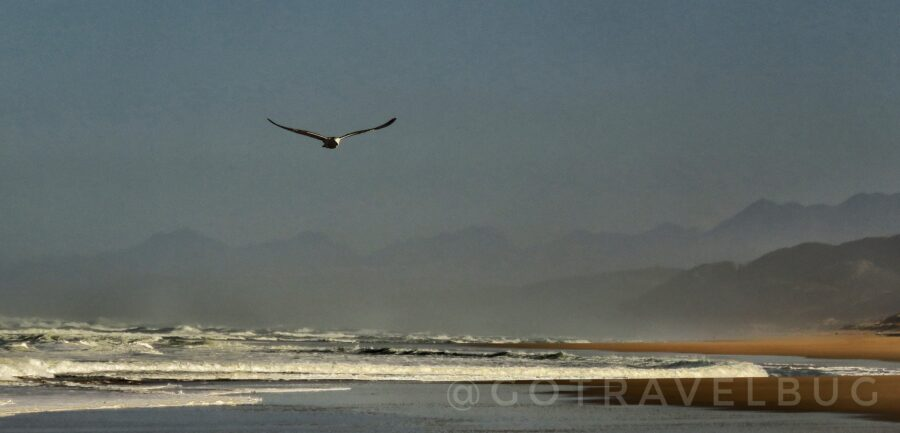 goukamma marine protected area garden route south africa