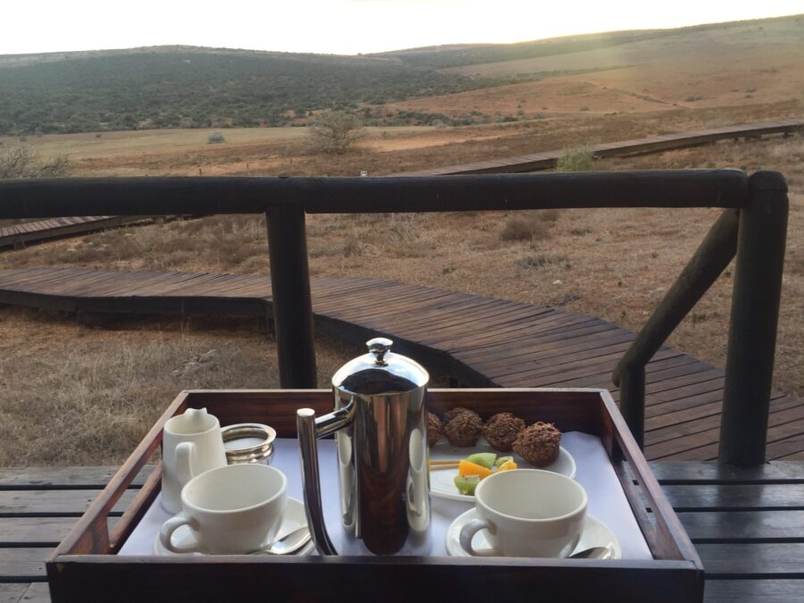 coffee game reserve addo elephant park gorah