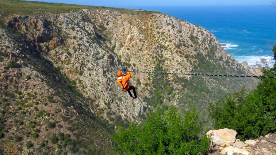 zipline knysna harkerville garden route south africa
