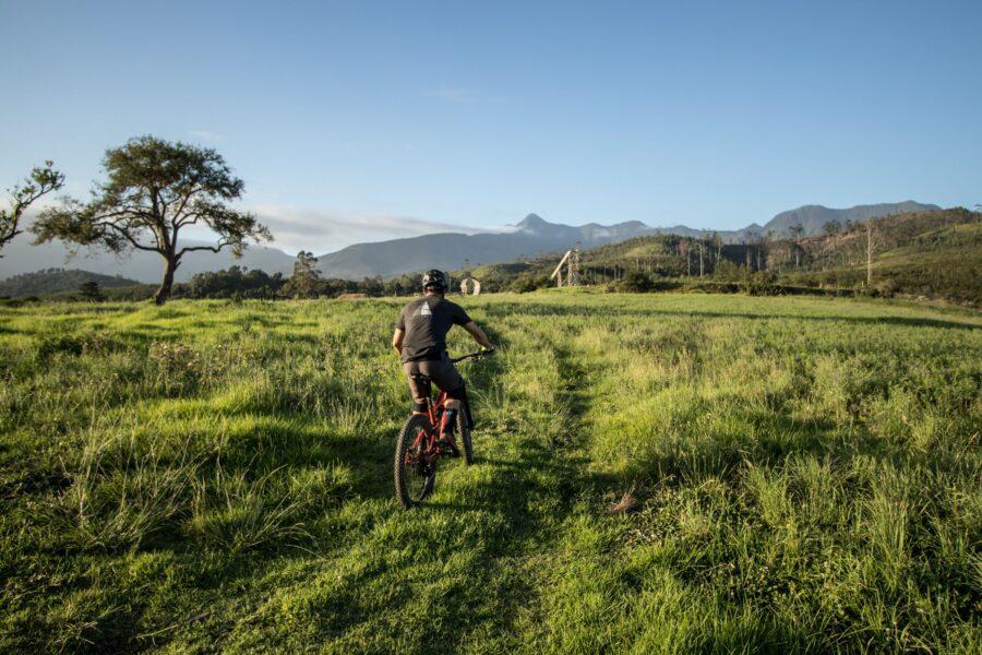 garden route trail park mtb knysna garden route south africa